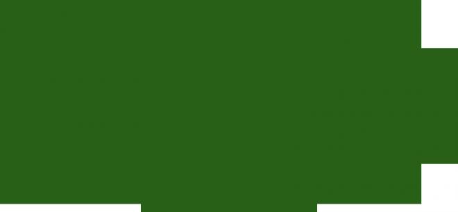 remington company